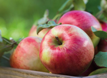 esarom Apfel